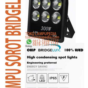 lampu floodlight bridgelux 300w