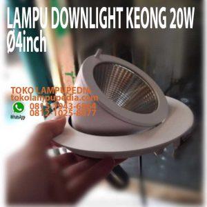 lampu downlight keong 20w